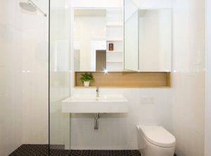 mirror cabinet storage, powder room design, custom cabinetry, Brisbane DbyD
